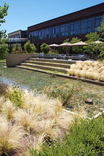 The-turtle-pond-vmware-hq-palo-alto